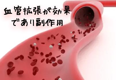 血管拡張が効果であり副作用